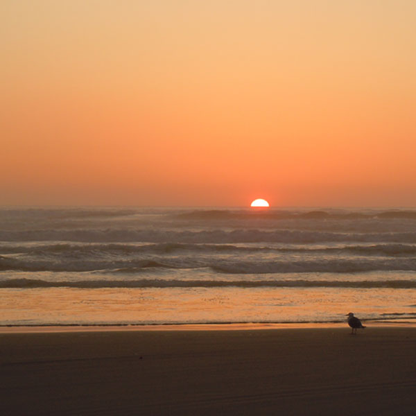 Sunset with Aloha